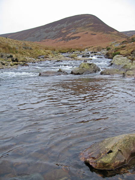 Coomb Height's east ridge from the River Caldew