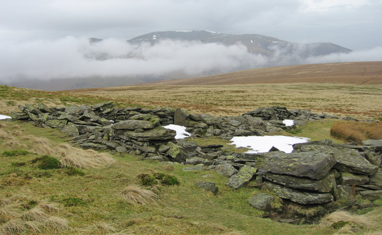 Skiddaw from the sheepfold on the ridge down to Mungrisdale Common (NY319288)