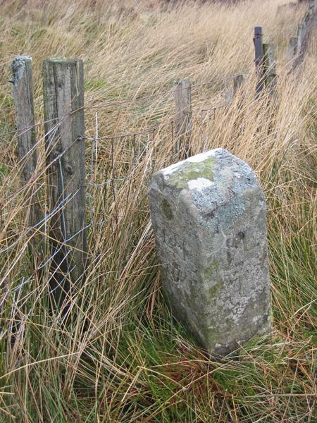 The Stake, a boundary stone (NY296288)