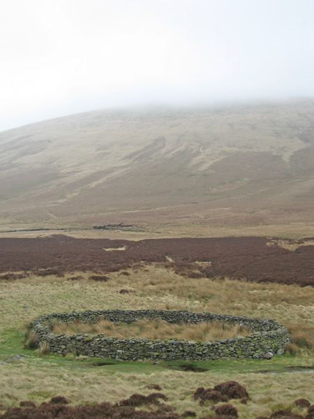 Circular sheepfold (NY296301) with the top of Mungrisdale Common now in cloud