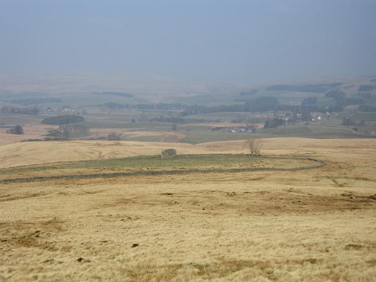 The field island at Thornthwaite