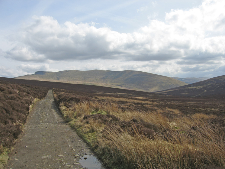 Looking back along the Skiddaw House track to the 'back' of Blencathra