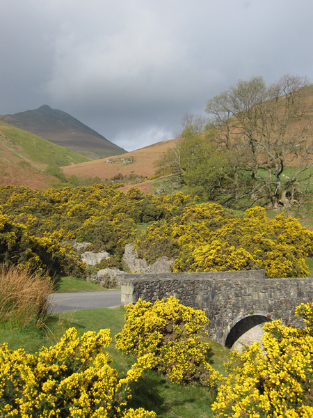 Causey Pike from Stonycroft Bridge