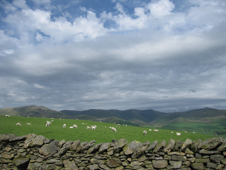 Looking east to the Howgill Fells, Fell Head to Arant Haw