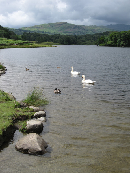 Rydal Water and Silver How