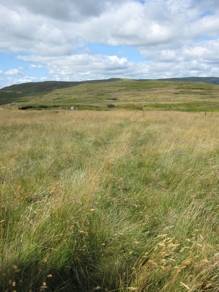 Following the fence line west, Grey Crag is in shadow on the left