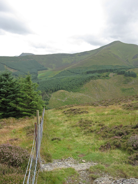 Grisedale Pike from the path up by the fence