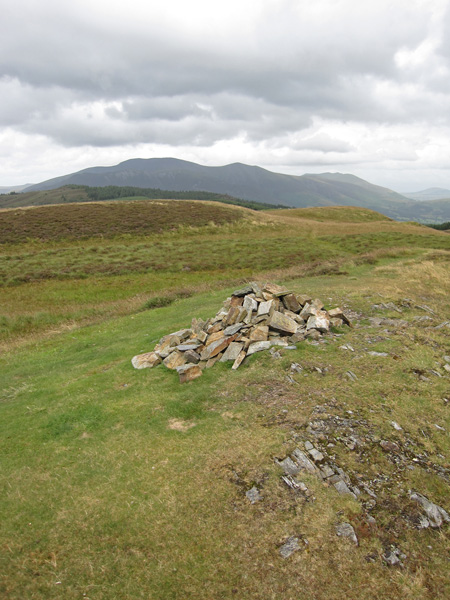 The Skiddaw fells from Whinlatter Top