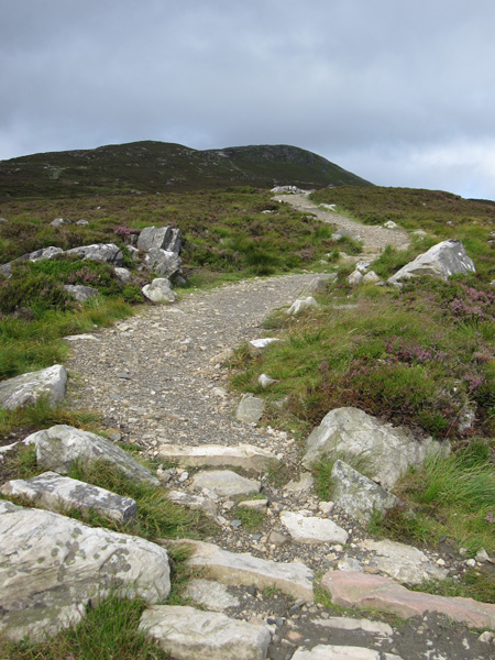 The new path heads for the ridge