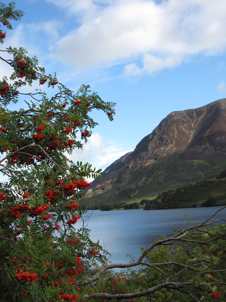 Across Crummock Water to Grasmoor