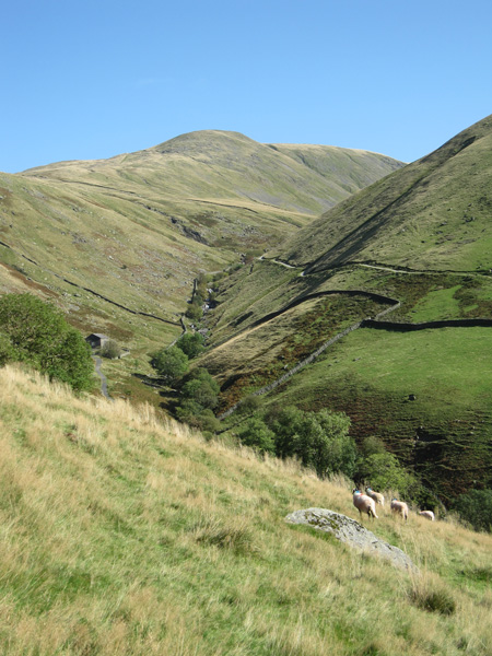 Hayeswater Gill