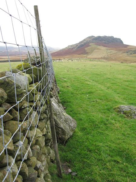 Great Crag from near Birkerthwaite