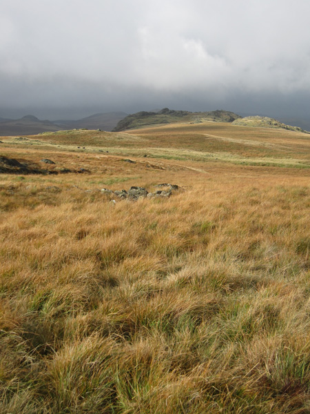 Looking back to Great Crag