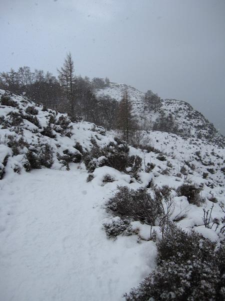 Looking back towards Walla Crag's summit
