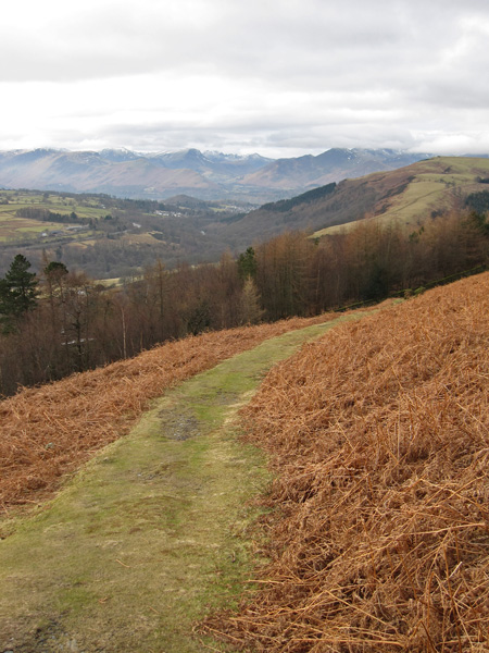 The north western fells and Latrigg on the far right from above the Blencathra Centre