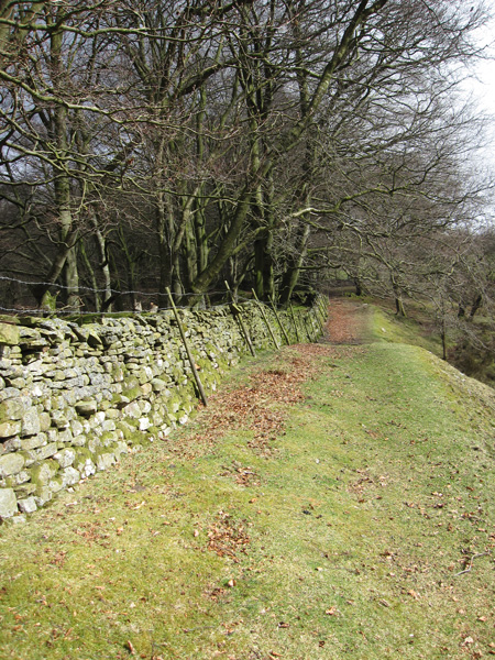 Path up to the Uldale House road