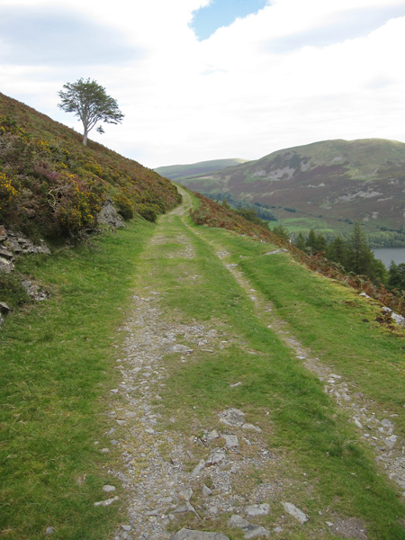 The Loweswater to Fangs Brow track
