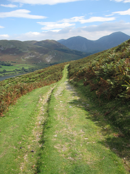 The Loweswater to Fangs Brow track, sunny now