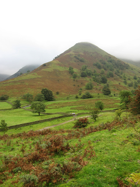 High Hartsop Dodd, to be our last summit of the day