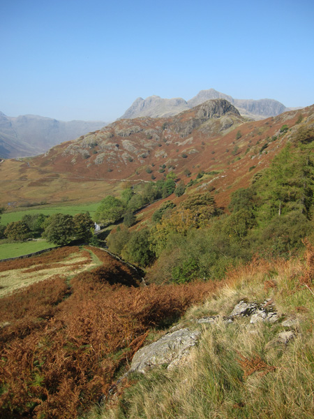 Side Pike with the Langdale Pikes behind from our ascent route