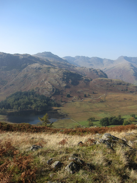 Looking over Blea Tarn to Pike o'Blisco, Crinkle Crags and Bowfell