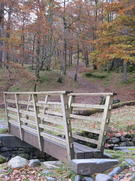 Footbridge, Dalt Wood