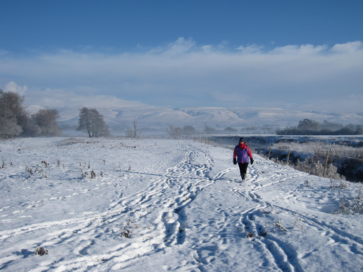 Walking by the Eden with the North Pennines behind