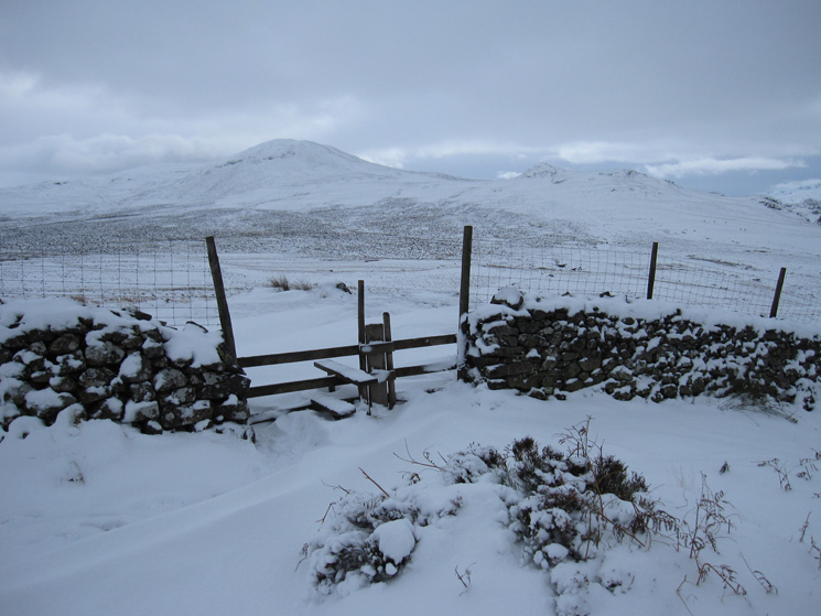 Looking across to Bleaberry Fell
