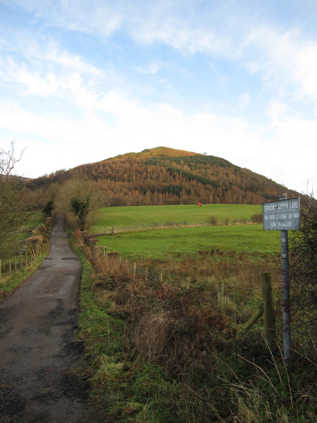 Latrigg (and a horse with a red coat) from the end of Spoony Green Lane