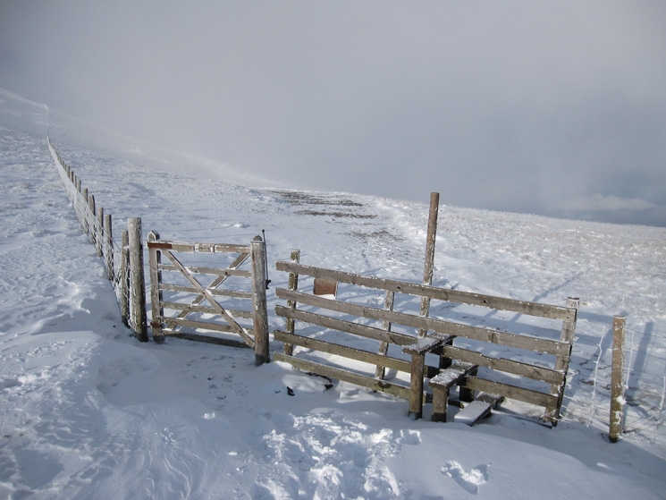 Straight on for Skiddaw's summit