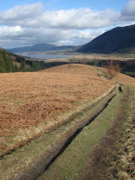 Towards Bassenthwaite Lake from Kinn