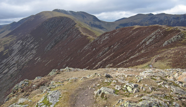 Looking back along the ridge from Causey Pike's summit
