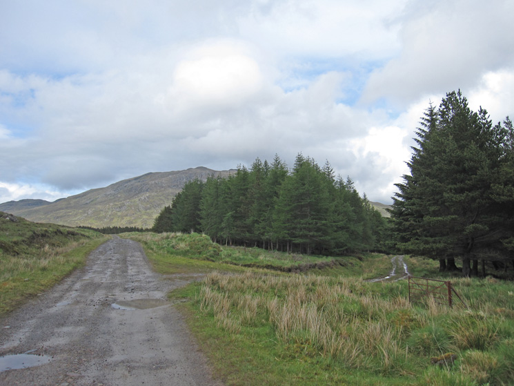 Folach Gate, straight on for Inverguseran, I turned right
