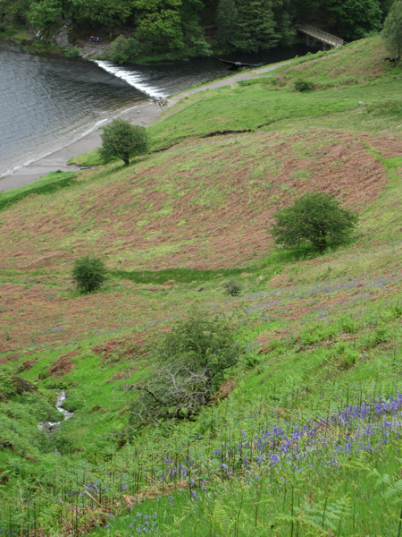Looking down on the weir from the end of Loughrigg Terrace