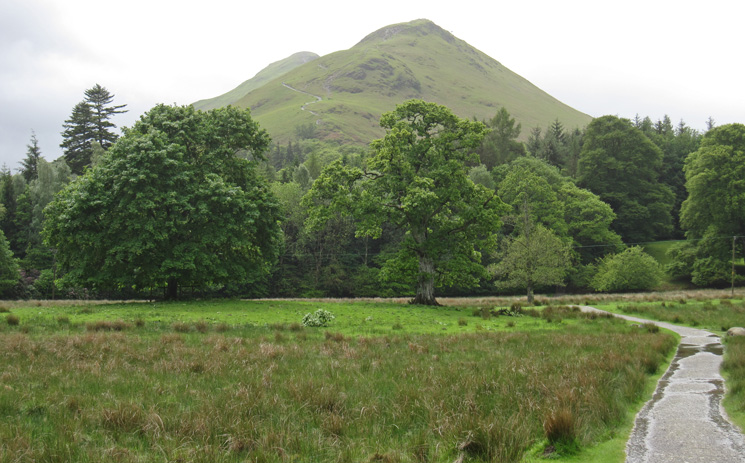 Catbells from The Park
