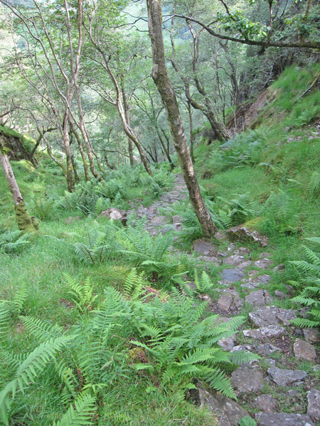 Looking back down the steep pitched path
