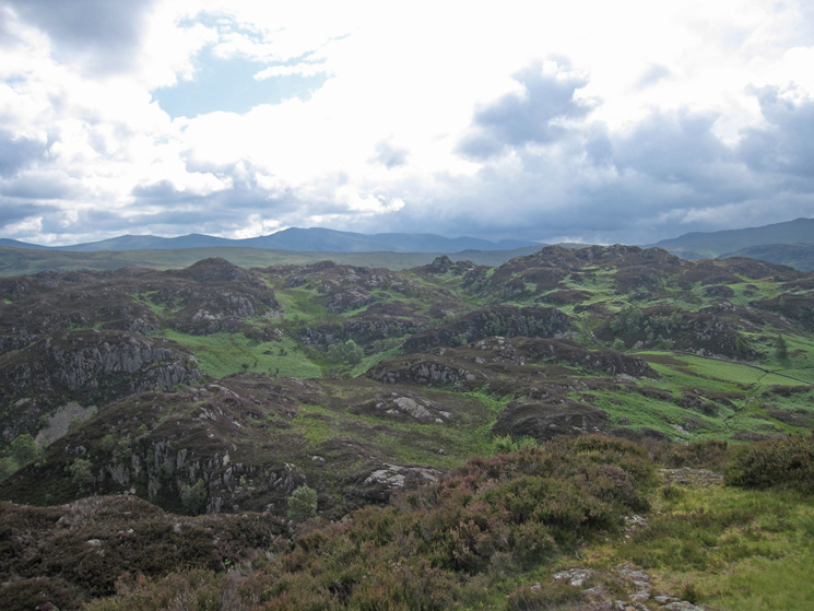 Looking across to Brund Fell, the highest part of Grange Fell, with the Helvellyn ridge in the distance
