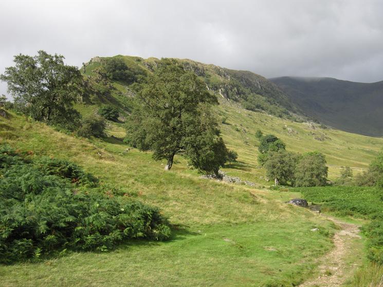 Swine Crag, the start of the Rough Crag ridge