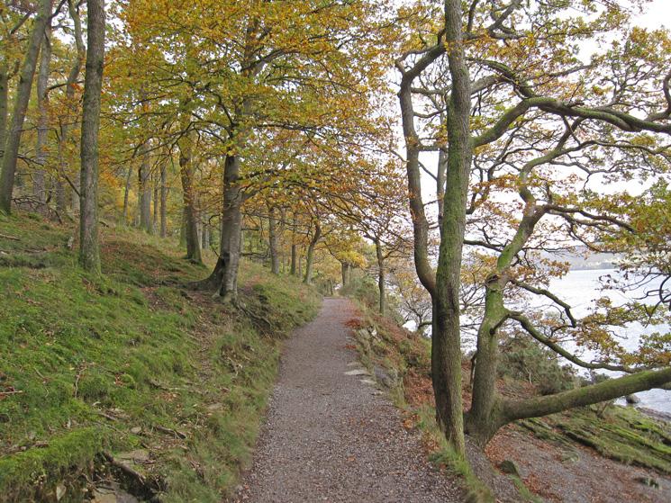 Lakeside path through Brandelhow