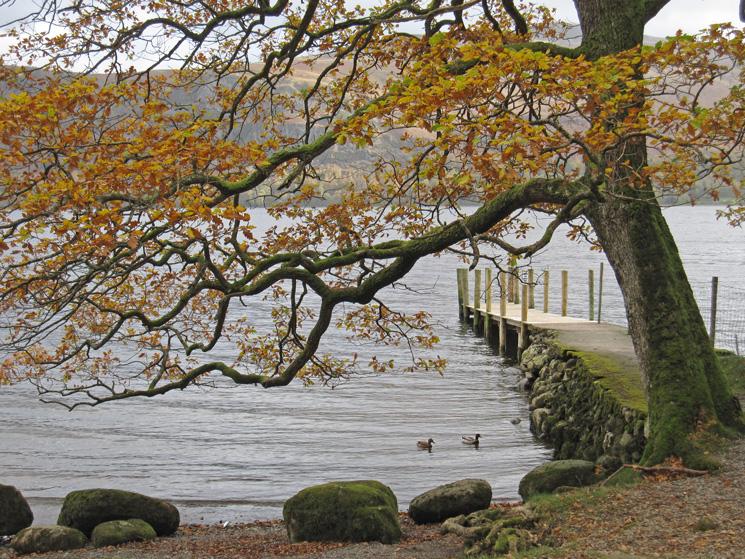 Low Brandelhow jetty