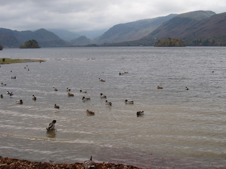 Looking up Derwent Water from near Friar's Crag