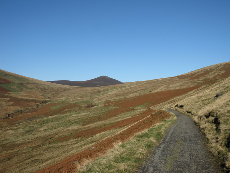 Looking back along the Skiddaw House track with Great Calva in the distance