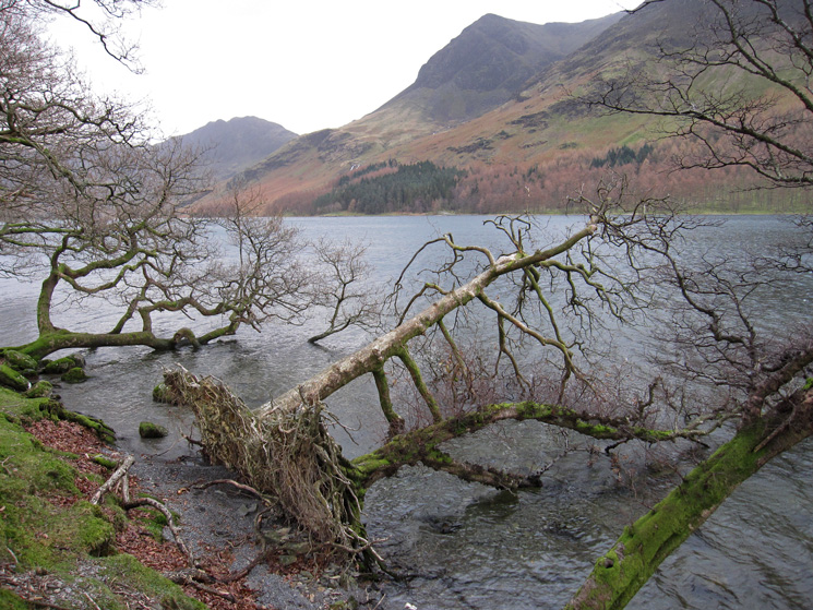 Across Buttermere to Haystacks and High Crag