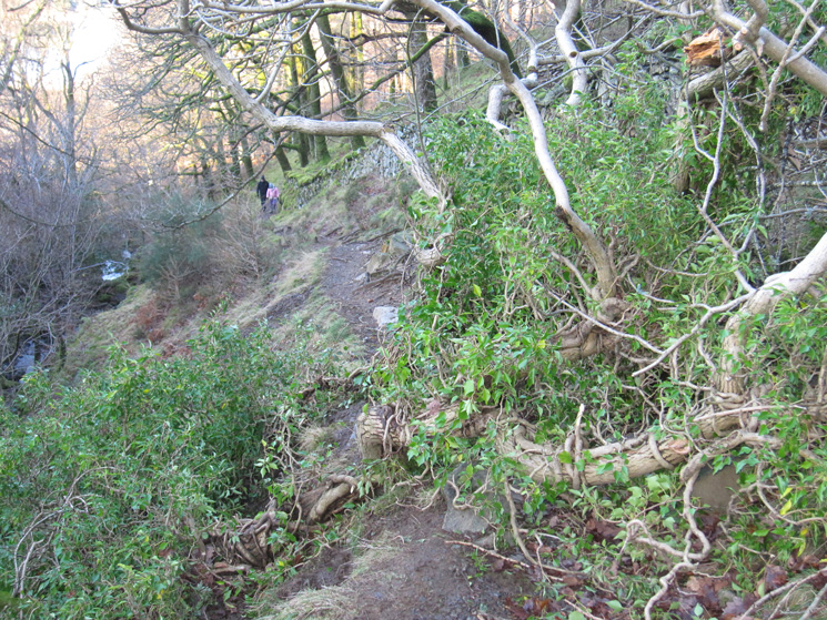 A new obstacle across the Cat Gill path