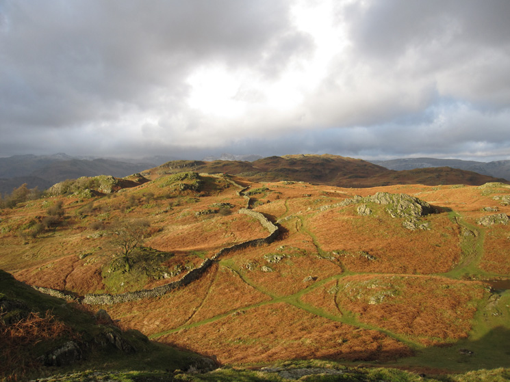 Loughrigg from south east of Lily Tarn