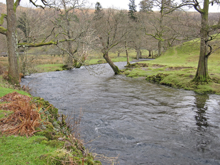 Lots of water in the River Rothay