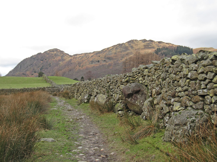 Grange Fell from the Longthwaite to Rosthwaite footpath
