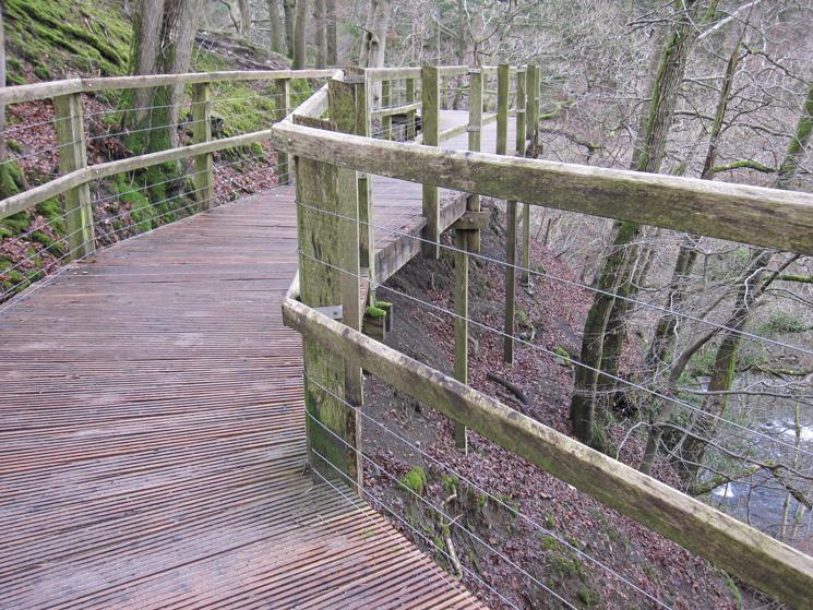 The boardwalk, high above the River Greta