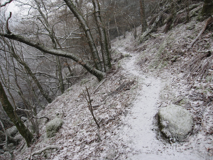 The path to the dam