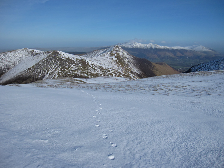 Hopegill Head, Sand Hill, Grisdale Pike, Skiddaw, Skiddaw Little Man and Blencathra